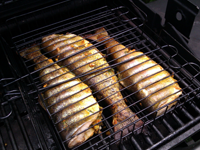 Trout On A Grill